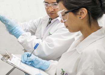 Técnicos de laboratorio del control de proveedores de AGQ Labs Costa Rica