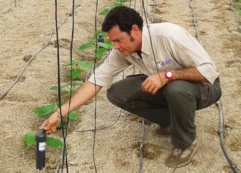 Trabajador de AGQ Labs Costa Rica con un cultivo